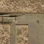 driveway repair dallas